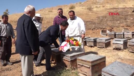 Şükür duası yaparken arı saldırısına uğramışlardı, bakın bugün ne yaptılar