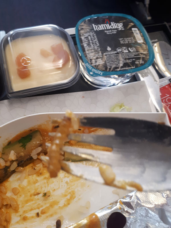 THY'nin yemeğinden tırtıl çıktı