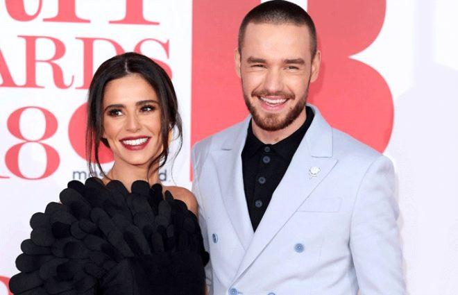 İngiliz şarkıcı Cheryl: Sperm donörü arıyorum - Resim: 2