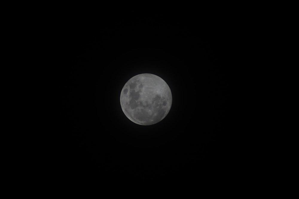 Bilim insanları açıkladı: Ay'da yaşam olabilir