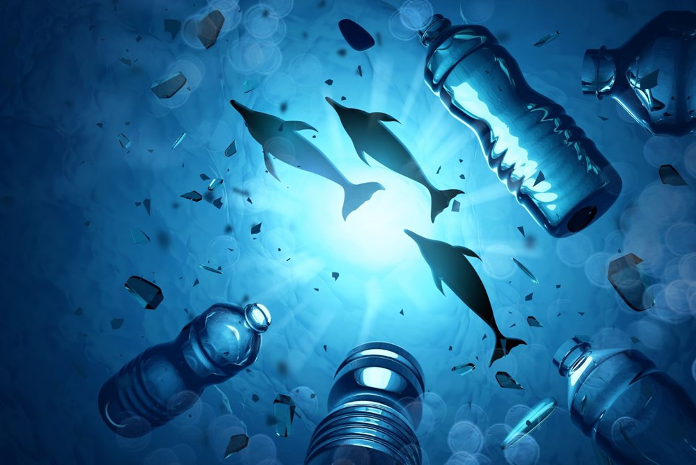 Okyanuslar tehdit altında! Balinalar ve yunuslar gelecek yüzyılı göremeyecek - Resim: 2