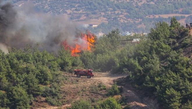 Hatay'daki yangın felaketinde flaş gelişme! 2 kişi tutuklandı