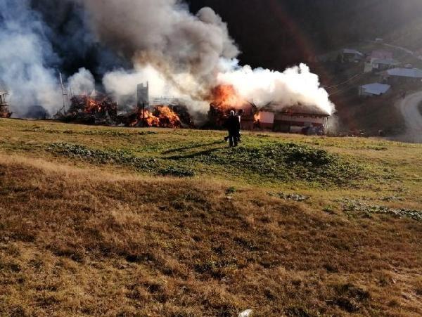 Karadağ Yaylası'nda büyük yangın!