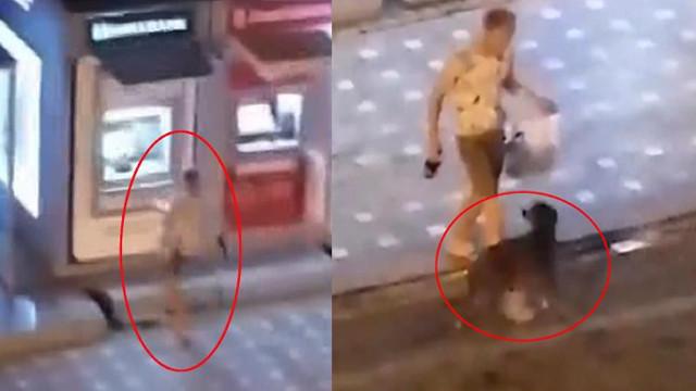 Rus turist, önce ATM'yi sonra köpeği tekmeledi!