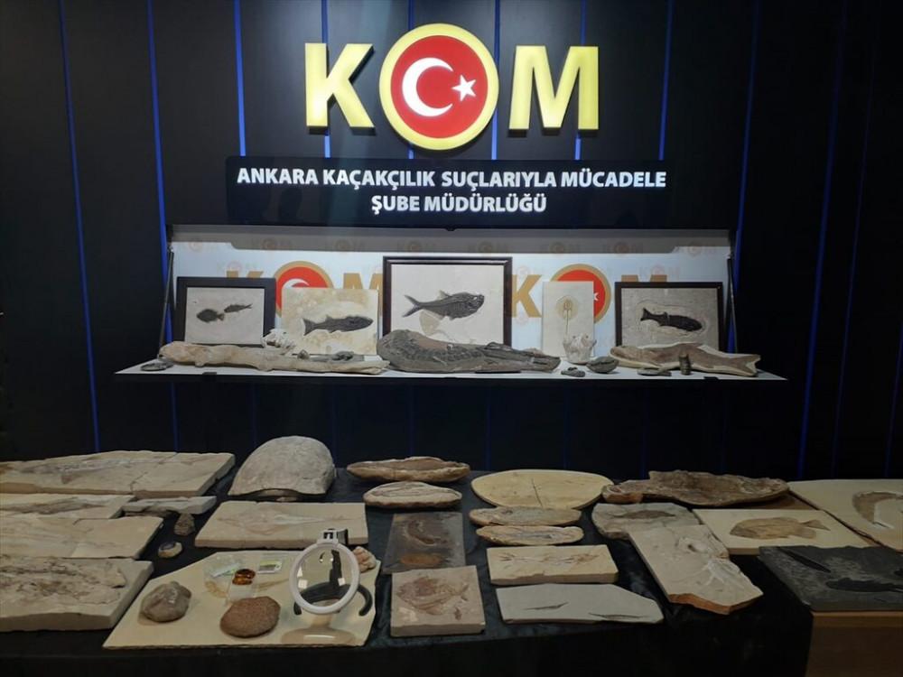 Adnan Oktar'ın milyon dolarlık fosilleri bulundu!  - Resim: 2