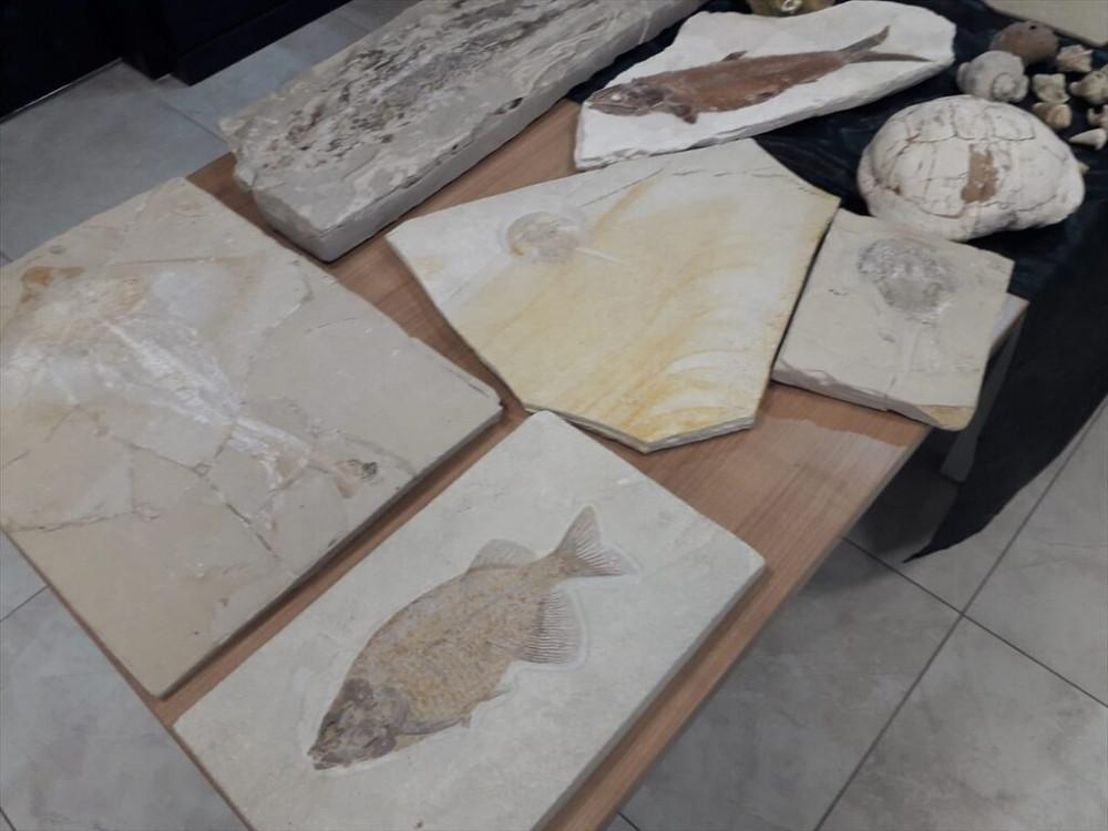 Adnan Oktar'ın milyon dolarlık fosilleri bulundu!  - Resim: 4