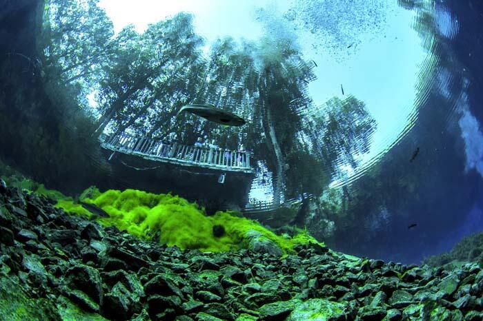 Sivas'ta bulunan Gökpınar gölü dünyanın en berrak gölleri arasında!