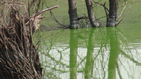 Barajda su seviyesi düştü, kayıp köy ortaya çıktı - Resim: 4