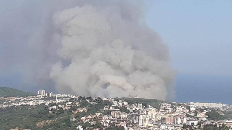Hatay'daki orman yangını ilerlemeye devam ediyor