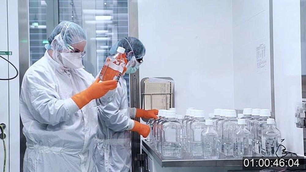 Koronavirüs aşısı yola çıkıyor! Adım adım görüntülendi