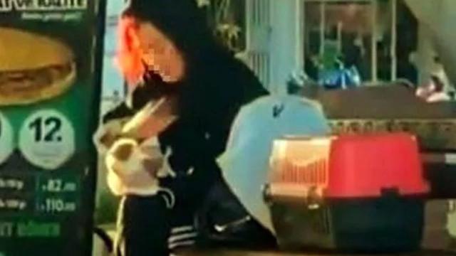Hamster'a tokat atıp ısırmaya çalışan kadına ceza