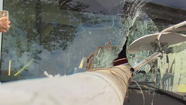 Otobüsün camından içeri girdi, şoför ölümden kıl payı kurtuldu