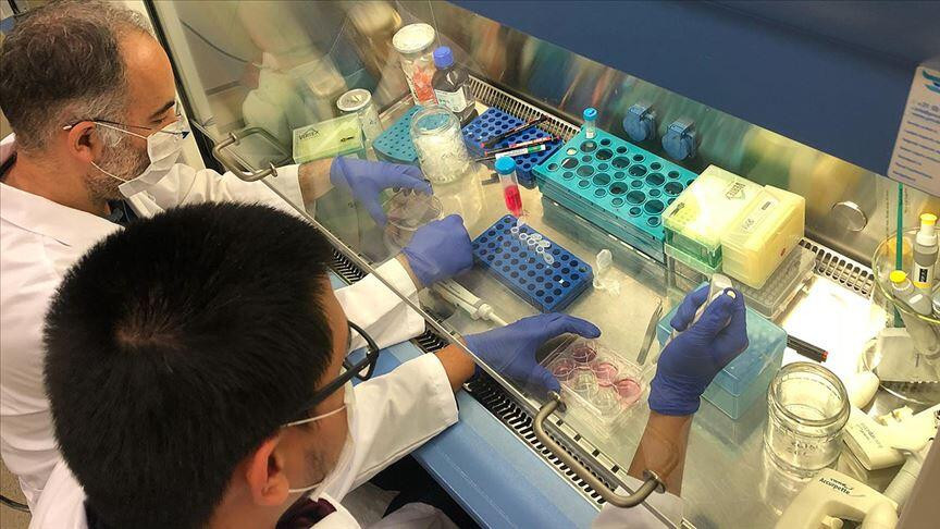 Koronavirüs tedavisinde yeni ilaç umudu