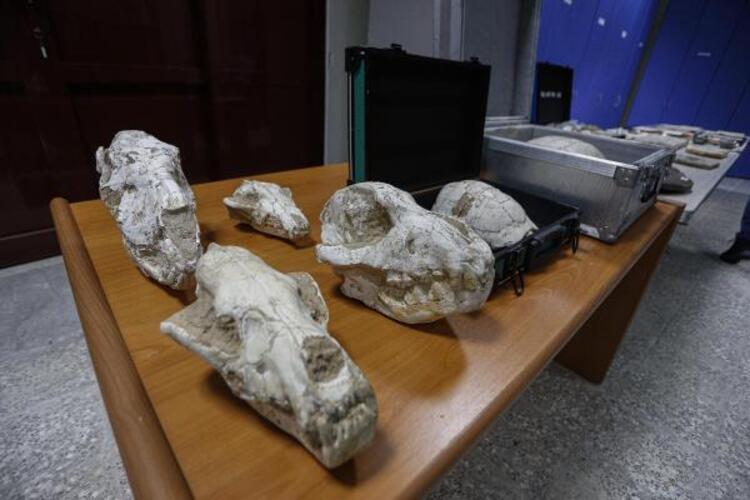 Adnan Oktar'ın çok özel koleksiyonu! 417 milyon yıl öncesine ait çıktı - Resim: 1