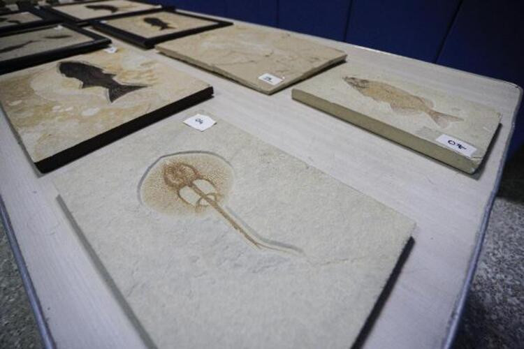 Adnan Oktar'ın çok özel koleksiyonu! 417 milyon yıl öncesine ait çıktı - Resim: 4