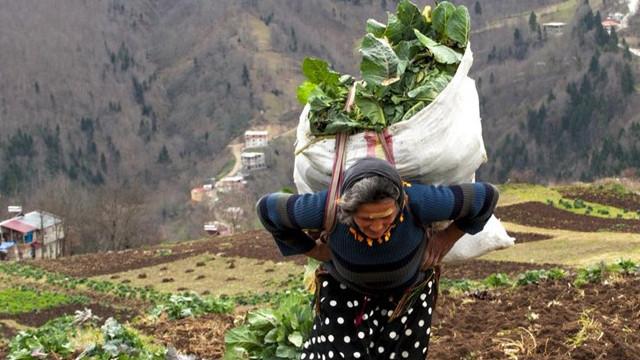 Karadeniz'in çalışkan kadınları! Köy toplansa evde tutamaz