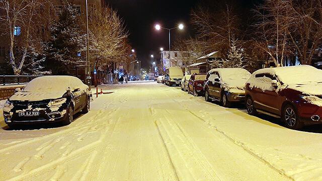Ardahan ve Kars'ta kar yağışı etkili oldu