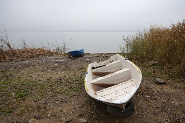 Sapanca Gölü'nde korkutan manzara