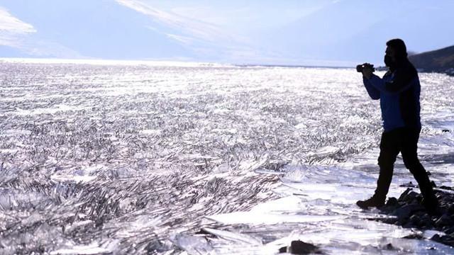 Yazın ayrı, kışın ayrı güzel! Çıldır Gölü'nde görsel şölen