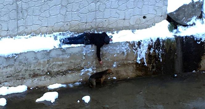 Yaşasın! İnsanlık ölmemiş! Buz gibi havada içimizi ısıttı!