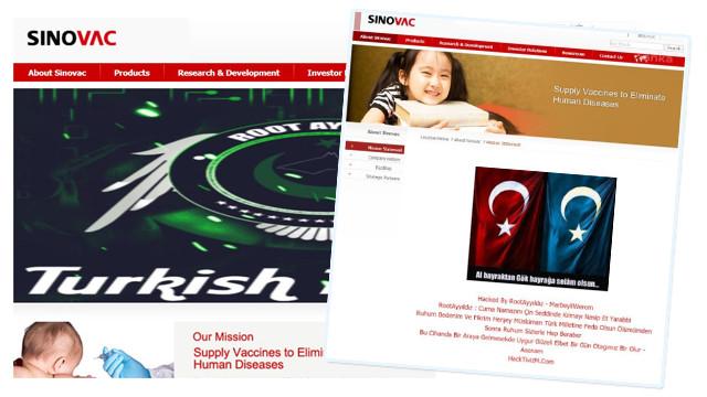 Türk bilgisayar korsanları Sinovac'in sitesini çökerti!
