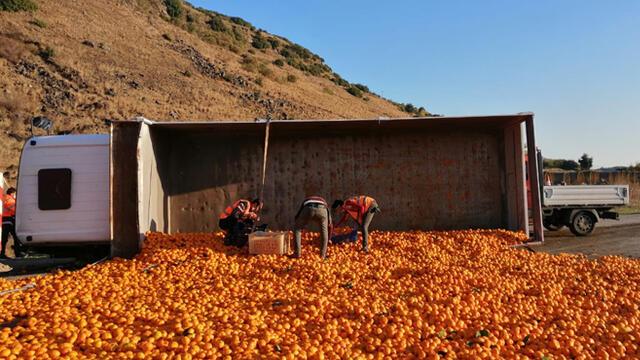 Kamyon devrildi, 15 ton mandalina yola saçıldı
