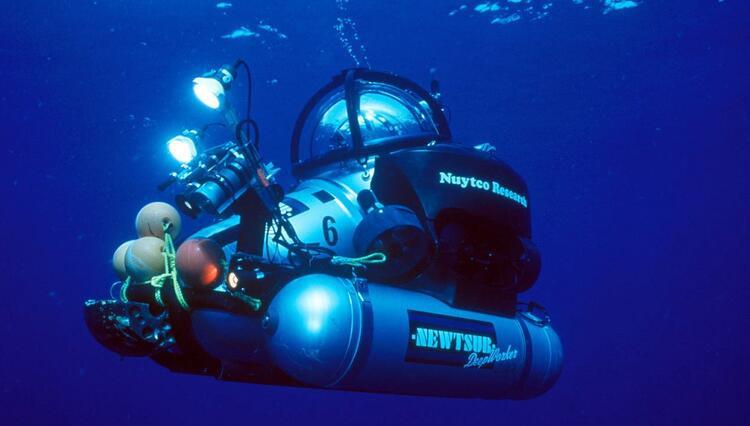 Okyanusun derinliklerinde şaşırtan keşif