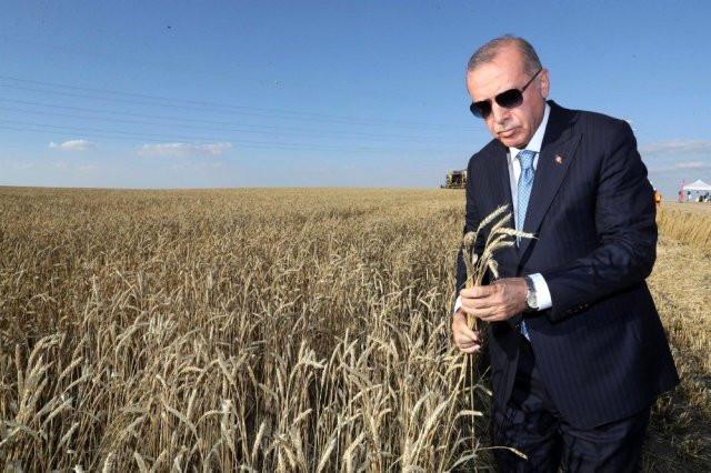 Erdoğan tohum talebini çözüme kavuşturdu