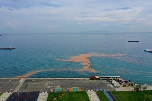 Marmara Denizi'nde korkutan görüntü