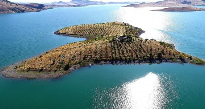 Türkiye'nin Robinson Coruse'sinin adası emin ellerde