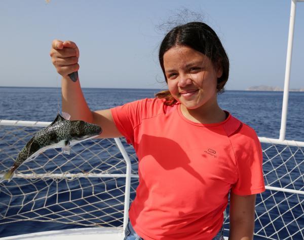 Balon balığı balıkçıların kabusu oldu