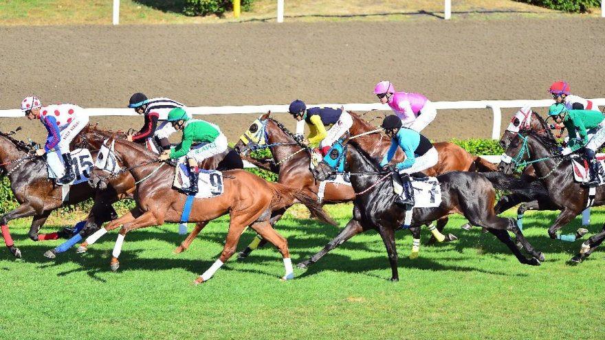 At Yarışları'nın yeniden başlayacağı tarih belli oldu!