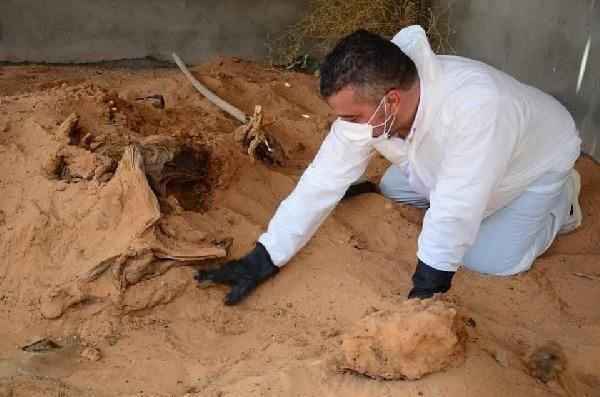 Libya'daki Essaidiye bölgesinde toplu mezar bulundu