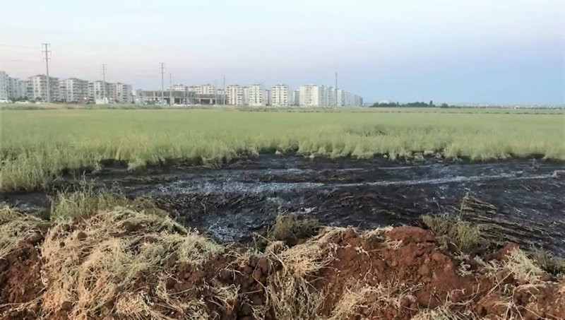Tarım arazilerine 5 ton kimyasal atık dökenler suçüstü yakalandı!
