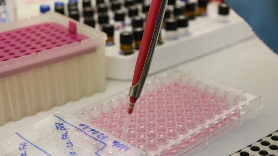 Türk bilim insanlarından kanser tedavisinde umutlandıran adım