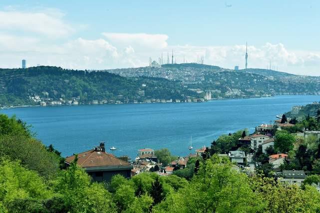 Beşiktaş Belediyesi karbon ayak izini nötrledi