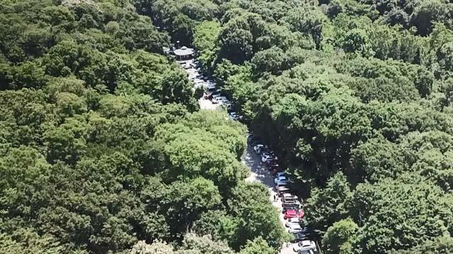 Babalar Günü'nde Belgrad Ormanı'na akın ettiler!