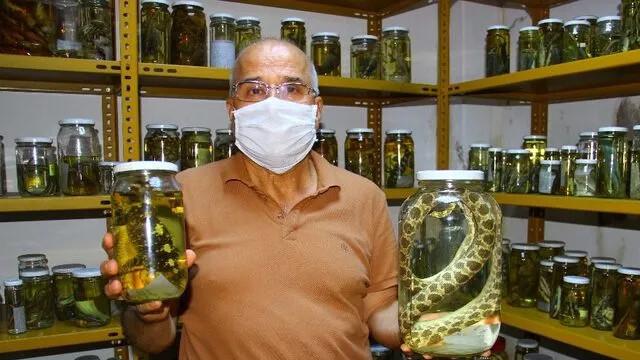 Üniversite profesörünün sürüngen tutkusu! Koleksiyonunda 150 tür var!