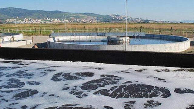 Foça'da denize kirli su bırakan arıtma tesisine tepki
