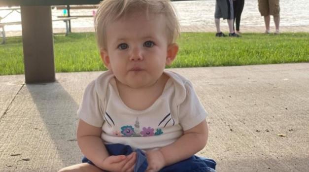 Pitbullların hedefi bu sefer 17 aylık bebekti! Parçalayarak öldürdüler
