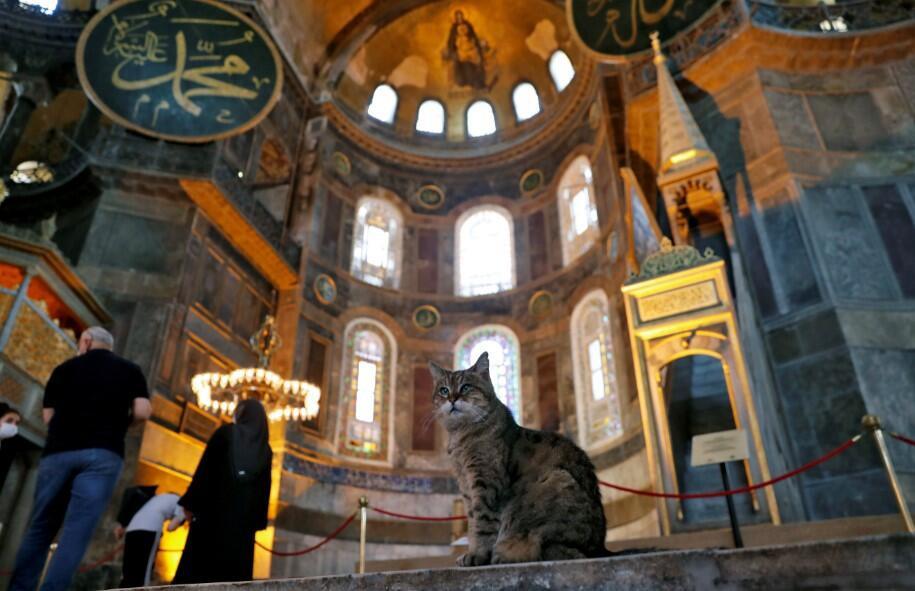 Türkiye'den UNESCO'ya ''Ayasofya'' yanıtı