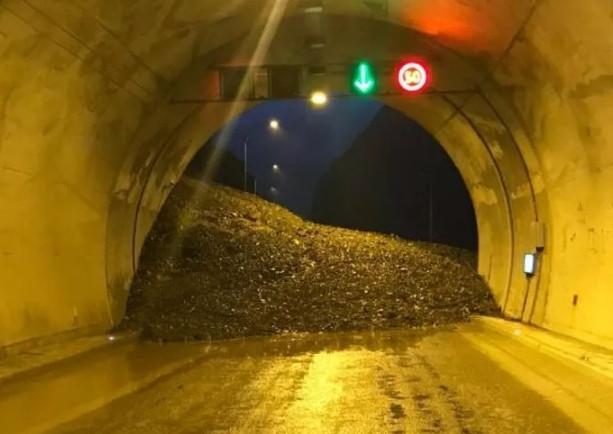 Heyelan Artvin-Erzurum karayolunu ulaşıma kapattı