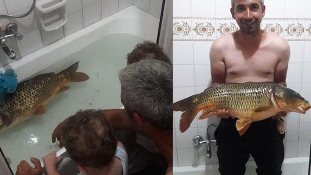 Sakarya'da ilginç olay! Yakaladığı balığı eve getirip küvete koydu