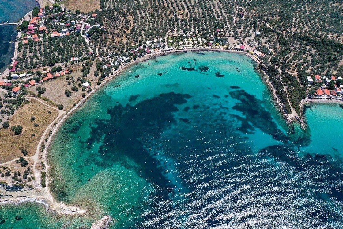 Türkiye'nin mavi ile yeşili buluşturan cennet koyları