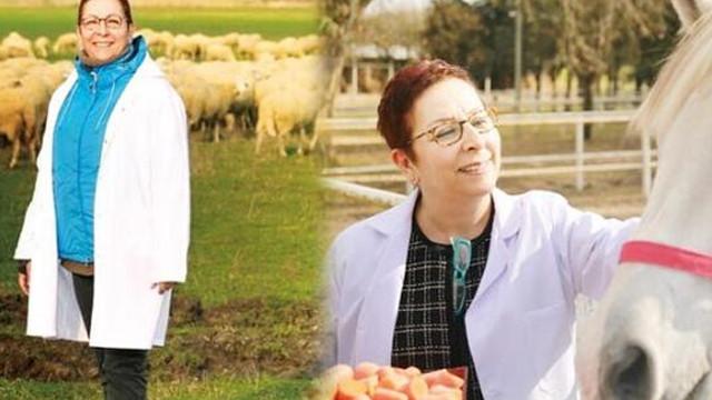 Türkiye'nin en büyük çiftliğini yönetem ''hanımağa''