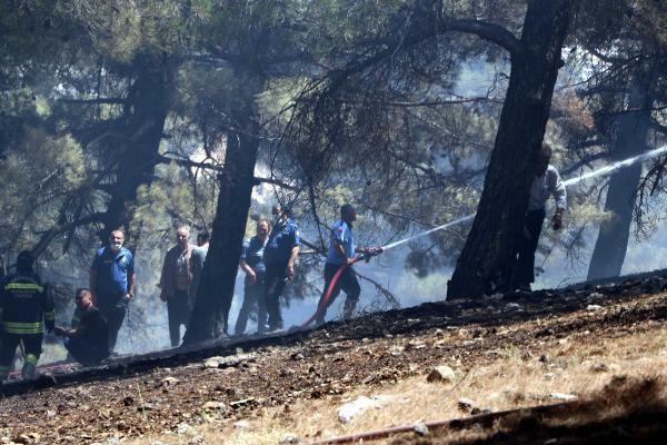 Gaziantep'te orman yangını! Kaymakam ve vatandaşlar da müdahale etti