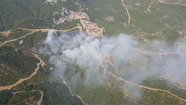 İzmir'deki orman yangınıyla ilgili 1 gözaltı
