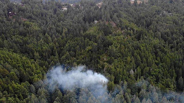 California'da yıldırım düşmesi sonucu orman yangını