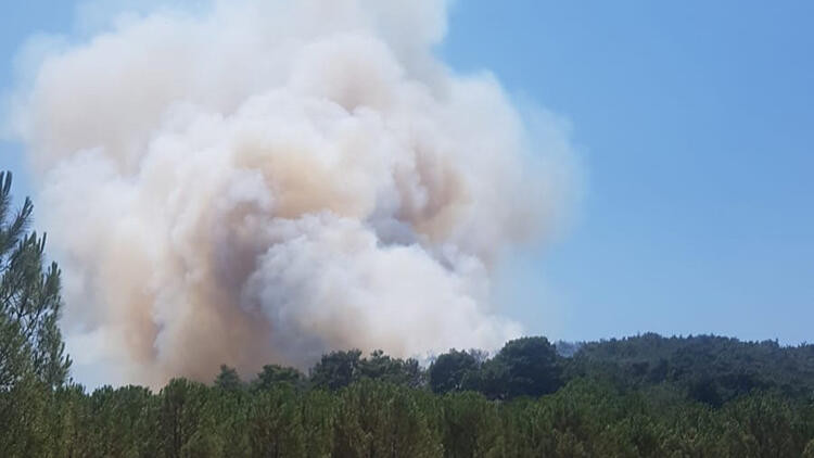 Türkiye alev alev! 5 ilde orman yangını çıktı
