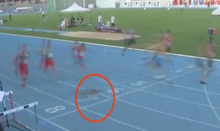 İstanbul'daki atletizm yarışında sürpriz ''koşucu''